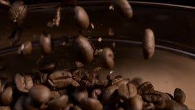 Kofee en grano y máquina almacen de video