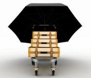 Koffer auf Frachtlaufkatze unter Regenschirm Stockbilder