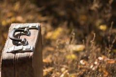 Koffer die zich op het gras met gele en oranje bladeren bevinden Royalty-vrije Stock Fotografie