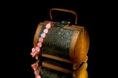 Koffer en halsband. Stock Foto