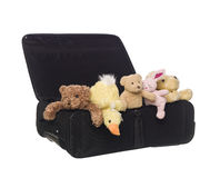 Koffer mit Spielzeug-Tieren Stockfoto