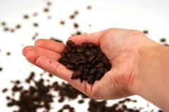 Koffie? Stock Afbeeldingen