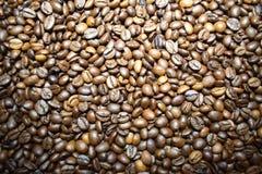 Koffie achtergrondkoffiebonen Royalty-vrije Stock Foto's