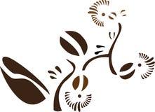 Koffie bloemen Royalty-vrije Stock Fotografie