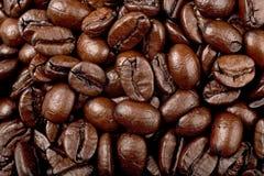 koffie bonen Stock Afbeelding