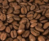 koffie bonen Royalty-vrije Stock Fotografie