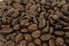 Koffie: Bonen Royalty-vrije Stock Foto