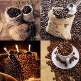 koffie boon Stock Afbeeldingen