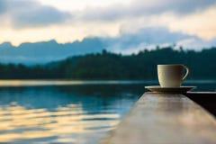 koffie in de berg bij suratthani Royalty-vrije Stock Foto