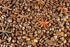 Koffie en anijsplant Stock Foto