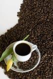 Koffie en gele tulp Stock Fotografie