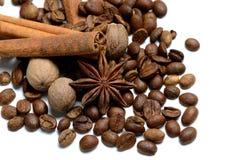 Koffie en Kruiden Stock Foto