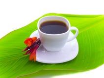 Koffie en rode bloem op blad Royalty-vrije Stock Afbeeldingen