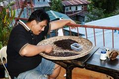 Koffie - Filippijnen stock afbeeldingen