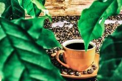 Koffie met bladeren stock afbeeldingen
