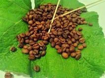 Koffie op een groot blad Stock Afbeelding