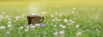 Koffie op gras in aard royalty-vrije stock foto