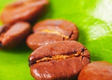 Koffie op green Stock Afbeelding