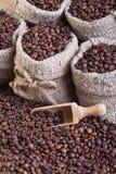 Koffie in zakken royalty-vrije stock fotografie