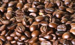 Koffiebonen stock afbeelding
