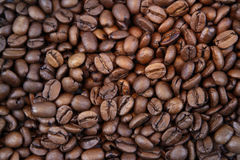 Koffiebonen Royalty-vrije Stock Fotografie
