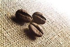 Koffiebonen Stock Foto
