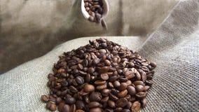 Koffiebonen die neer van houten lepel vallen stock video