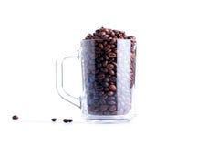 Koffiebonen in een glaskop op witte achtergrond wordt geïsoleerd die Royalty-vrije Stock Afbeelding