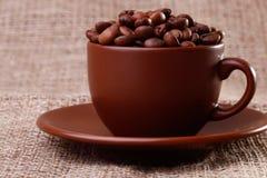 Koffiebonen in een kop Stock Fotografie