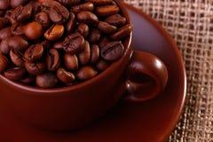 Koffiebonen in een kop Royalty-vrije Stock Afbeeldingen