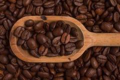 Koffiebonen in een lepel Coffeaarabica royalty-vrije stock foto