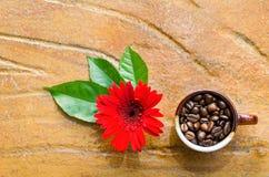 Koffiebonen in een mok met bloem en bladeren Stock Afbeeldingen