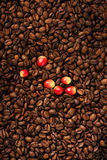 Koffiebonen en bes royalty-vrije stock foto's