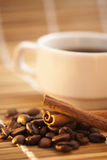 Koffiebonen en cinnamon_bright Royalty-vrije Stock Foto's