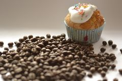 Koffiebonen en cupcake Royalty-vrije Stock Fotografie