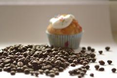 Koffiebonen en cupcake Royalty-vrije Stock Afbeeldingen