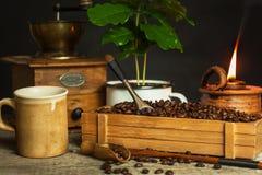 Koffiebonen en koffiezaailingen Koffie handel Gewassenproductie De reclame van cafï ¿ ½ Stock Afbeeldingen