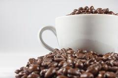 Koffiebonen en kop Stock Afbeeldingen
