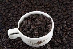 Koffiebonen in kop stock afbeelding