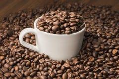 Koffiebonen in kop Royalty-vrije Stock Fotografie