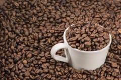 Koffiebonen in kop Stock Foto