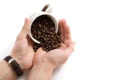 Koffiebonen op de handen stock afbeeldingen