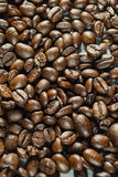 Koffiebonen op Neutraal Gray Background De donkere Koffie van het Braadstuk Royalty-vrije Stock Foto