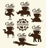 Koffiebonen van verschillende landen Stock Afbeeldingen
