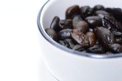 Koffieboon in een kop Royalty-vrije Stock Fotografie