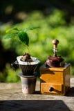 Koffieboon op bruine achtergrond Royalty-vrije Stock Fotografie