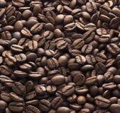 Koffiedik stock afbeelding