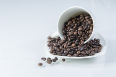 Koffiekop en coffe boon Stock Foto's