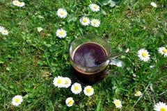 Koffiekop op gras Stock Afbeeldingen