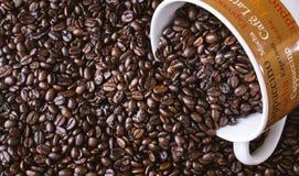 Koffiemok met gemorste gehele donkere geroosterde koffiebonen Stock Afbeeldingen